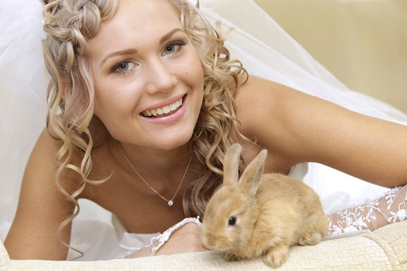 Portrait of a pretty bride with a rabbit