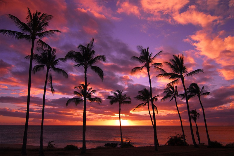Hawaiian Sonset On Molokai